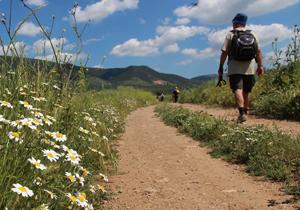 """""""trekking Gargano"""""""