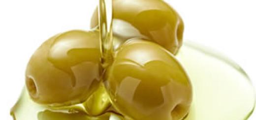 olio oliva gargano