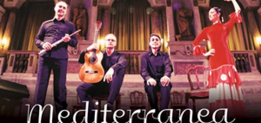 mediterranea flamenco