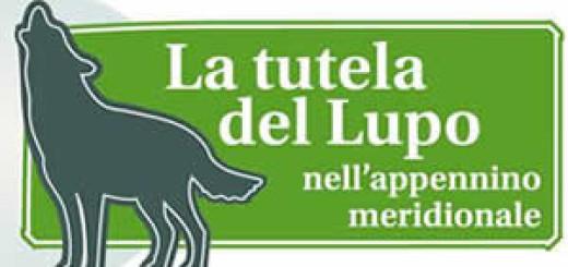 corso di formazione tutela del lupo